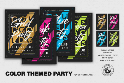 Color Themed Party Flyer Template PSD download