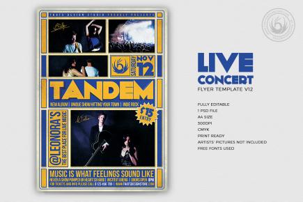 Live Concert Flyers posters Templates V12, Alternative band, Indie pop rock festival psd
