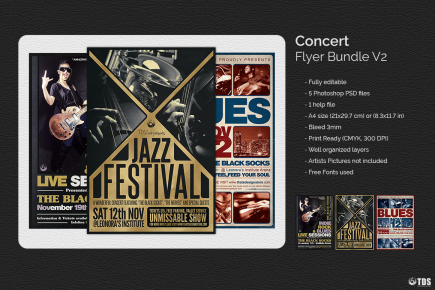 Download Concert Flyer Templates V2 for Music or Jazz Festival or any Indie music live band